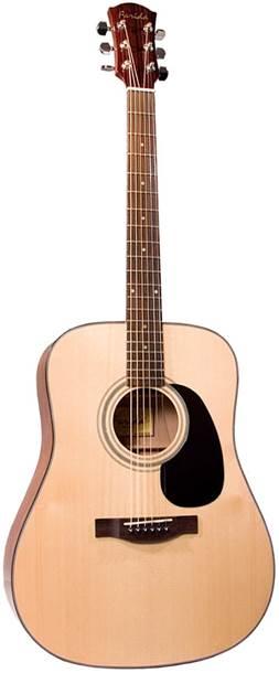 Farida D8 Acoustic