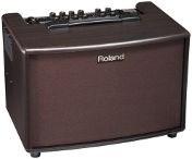 Roland AC-60RW Acoustic Combo