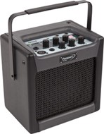 Fender Passport Mini Combo