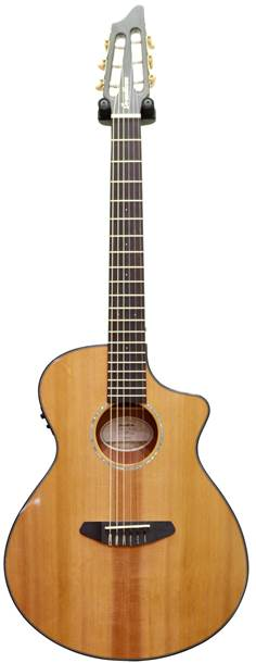 Breedlove Pursuit Nylon