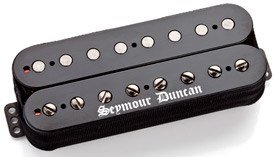 Seymour Duncan Black Winter 8 String Neck
