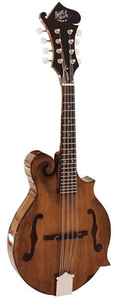 Barnes and Mullins BM650 Salvino Mandolin