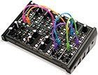 Plankton Electronics Ants Semi-Modular Analogue Desktop Synth (Pack)
