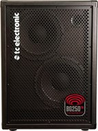 TC Electronic BG250 210 Bass Combo (Ex-Demo) #S170900549BRN