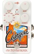 Electro Harmonix Canyon Delay and Looper