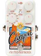 Electro Harmonix Canyon Delay and Looper