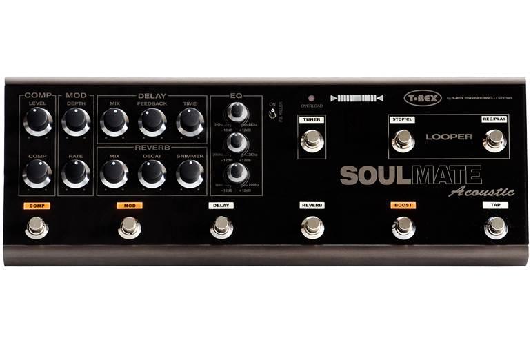 T-Rex Acoustic Soulmate