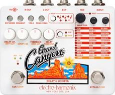 Electro Harmonix Grand Canyon Delay and Looper
