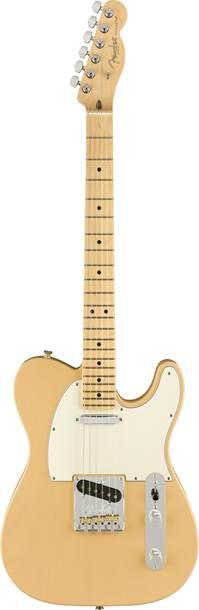 Fender LE American Pro Light Ash Tele Honey Blonde MN