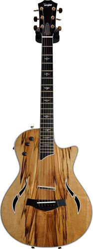 Taylor T5z Custom Limited Sassafras (Ex-Demo) #1103307093