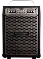 Mesa Boogie Venture 2x12 Bass Combo Silver Grille (Ex-Demo) #893