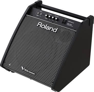 Roland PM-200 Drum Amp (Ex-Demo) #Z6I1371