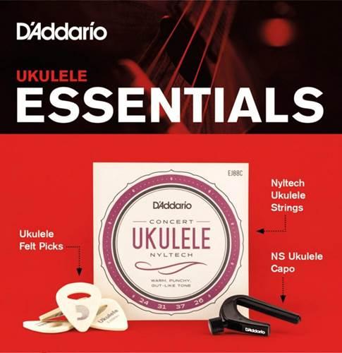 D'Addario PW-UKEB-VM Ukulele Essentials Bundle