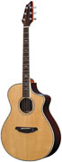 Breedlove C25 SRe Atlas Stage