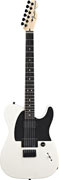 Fender Jim Root Telecaster White