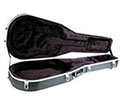 Peavey Molded Case Acoustic