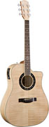 Fender T-Bucket 400CE All Exotic (End Of Line)