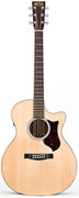 Martin GPCPA4 Performing Artist Grand Performance Model