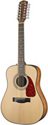 Fender CD-160SE 12 String Natural with Fishman