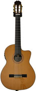 Finlayson CLA-50CEG Classical Rosewood/Cedar with Fishman Presys 301 (Gloss Top)