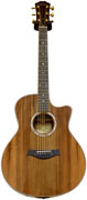 Taylor BTO #4434 GS Sinker Redwood/ Macassar Ebony-CV Bracing