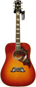 Gibson Dove Antique Cherry #11052013