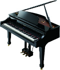 Roland RG-3F Polished Ebony Digital Piano
