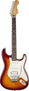 Fender Standard Stratocaster Floyd Rose Plus Top RW Tobacco Sunburst