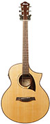 Ibanez AEW22CD-NT Natural High Gloss (2014) (Ex-Demo) #S141100757