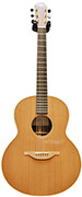 Lowden F25 IR/C Indian Rosewood/Cedar (Ex-Demo) #19195