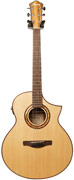 Ibanez AEW23ZW-NT Zebrawood Natural (2015) (Ex-Demo) #S151100678