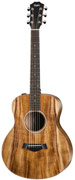 Taylor GS Mini Koa-e ES-T (2015)