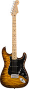 Fender Exotic Wood 2017 Limited Edition American Professional Mahogany Stratocaster Violin Burst