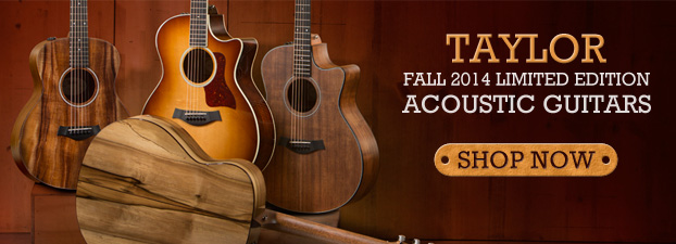 Taylor Fall Limited 2014 Acoustics