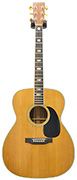 Martin J-40M (Pre-Owned)
