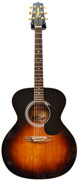 Takamine FP250 SMSB (Pre-Owned)