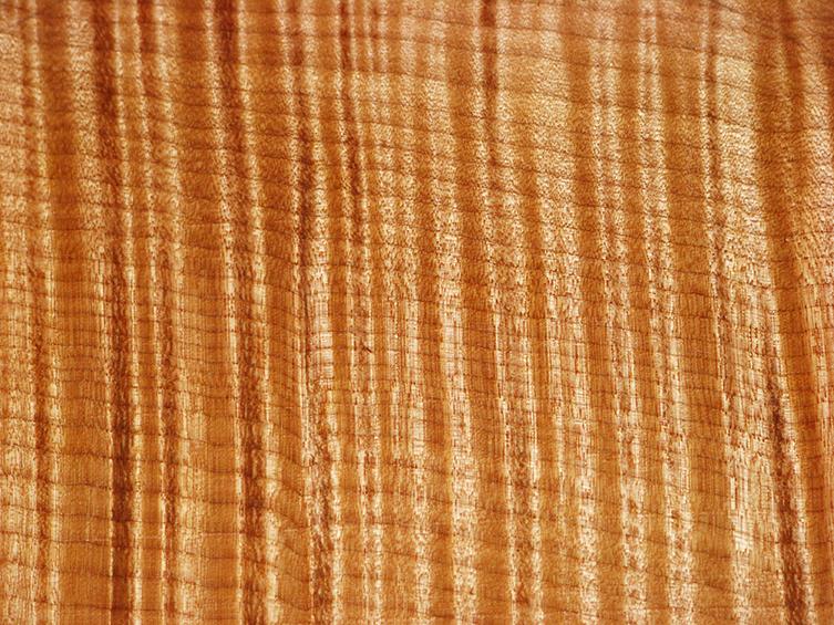 Investigating Tonewoods: Maple