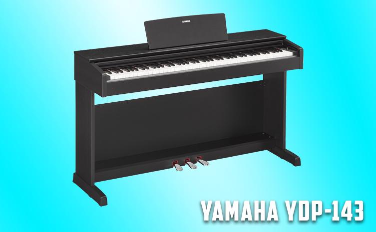 YDP-143